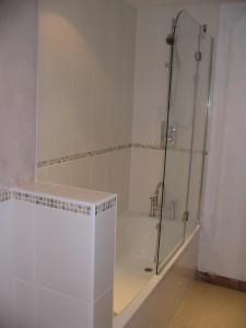 Bath/shower view