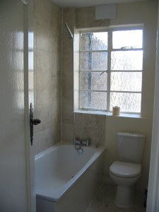Bath Toilet And Window View